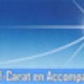 logo_carat_signat
